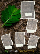 My First Herbarium's thumbnail