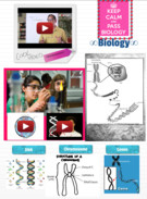 Biology~ Chromosomes, genes and DNA's thumbnail