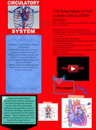 About the Circulatory System's thumbnail