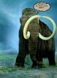 wooly mammoth in the ice age