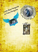 llittle Blue Penguins's thumbnail