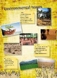 africa env issues.
