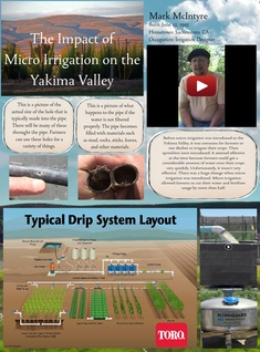 The Impact of Micro Irrigation