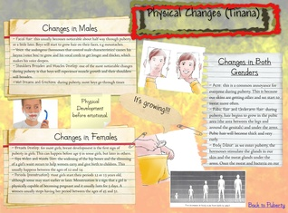 Physical Changes - Puberty