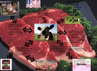 the facts about beef