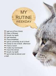 my rutine weekday