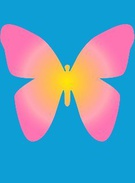 butterfly's thumbnail