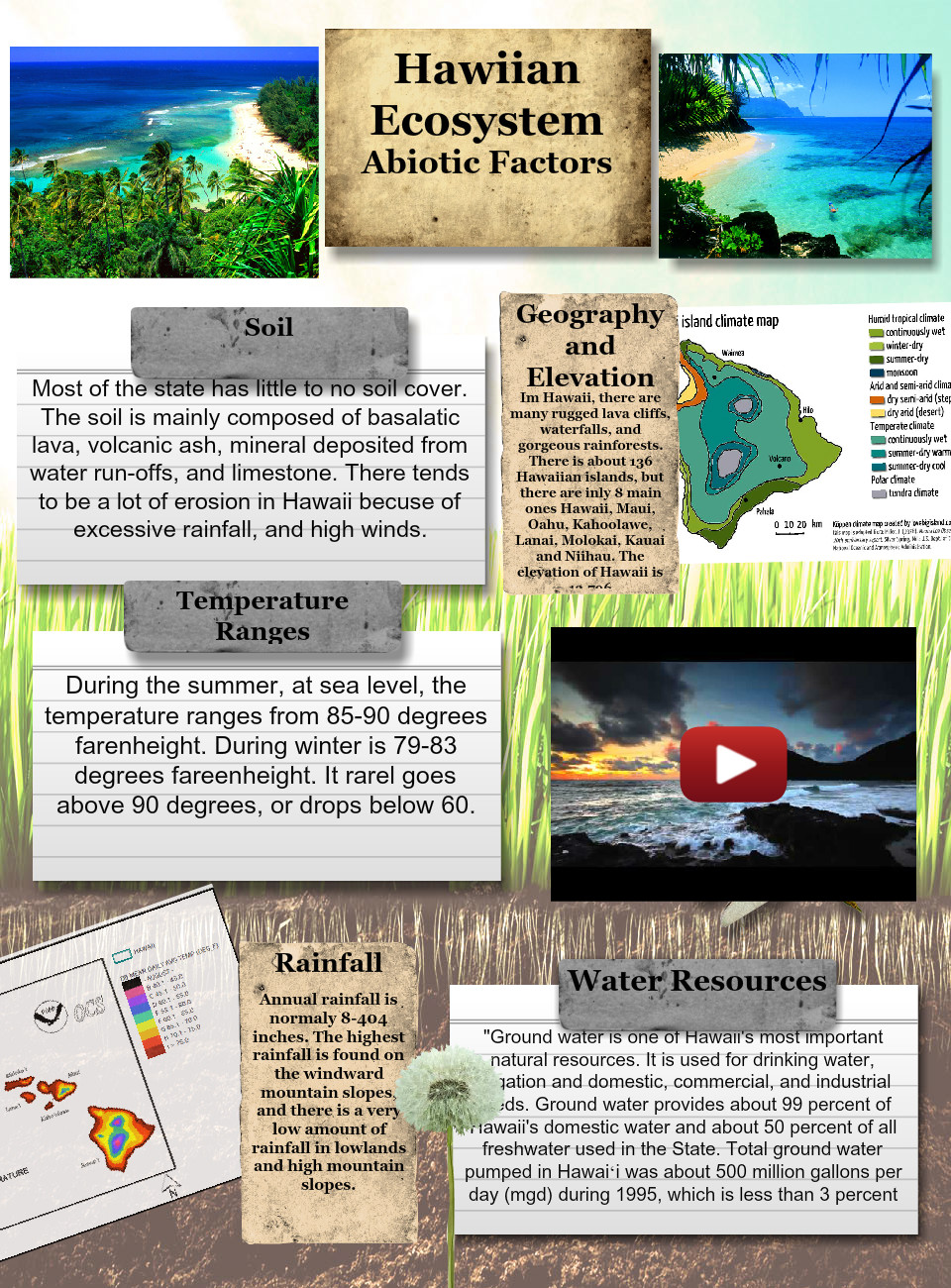 Hawaiian Ecosystem - Abiotic Factors