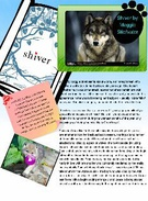 Shiver by Maggie Stiefvater's thumbnail