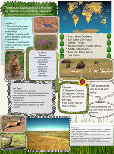 Temperate Grassland/Prairies