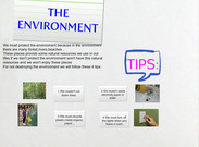The Enviroment's thumbnail