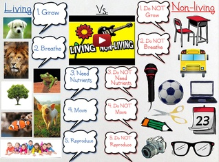 Living vs. Non-living things