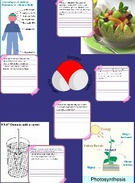 Cell Processes's thumbnail