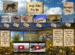 Death Valley - Food Web thumbnail