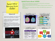 Attention-Deficit/Hyperactivity Disorder (ADHD)'s thumbnail