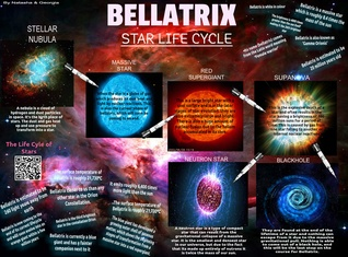 Bellatrix: Star Life Cycle