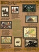 The Daily Life of Knights During The Middle Ages thumbnail