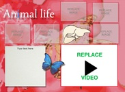 Animal life's thumbnail