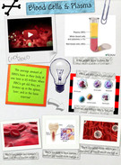 Blood Cells and Plasma's thumbnail